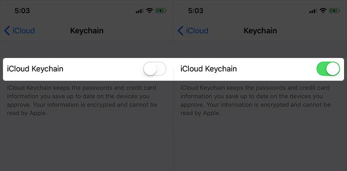 Enable iCloud Keychain on iPhone X