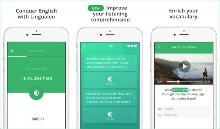 English with Lingualeo Grammar iPhone and iPad App Screenshot