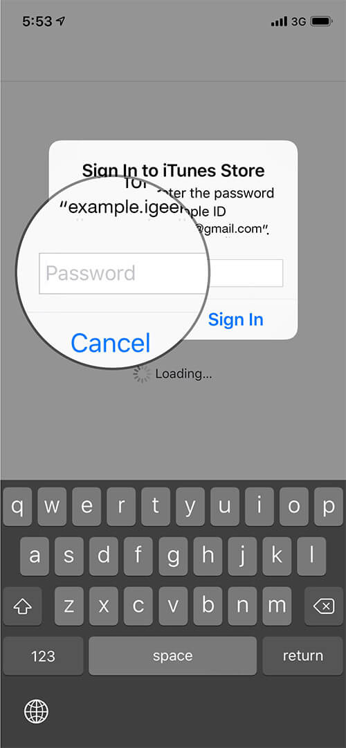 Enter Apple ID password to Access iTunes Store and App Store