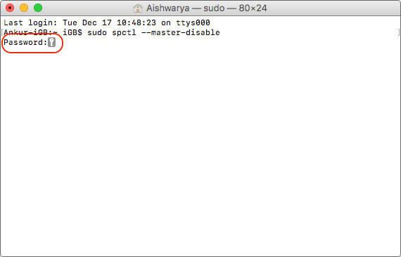 Enter Password in Terminal on Mac
