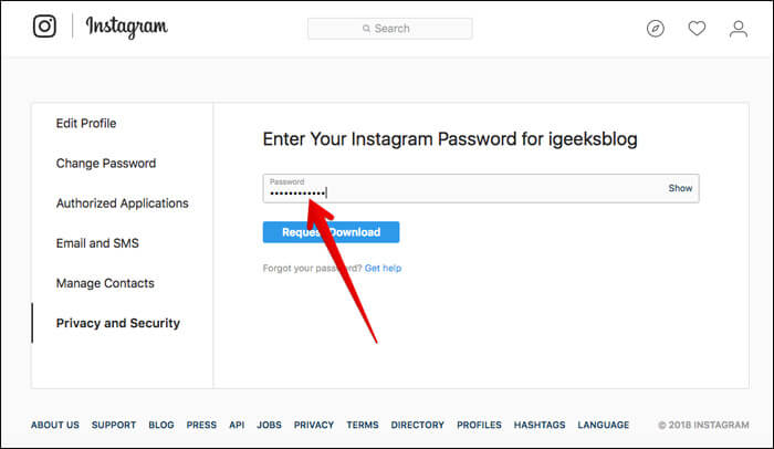 Enter your Instagram password