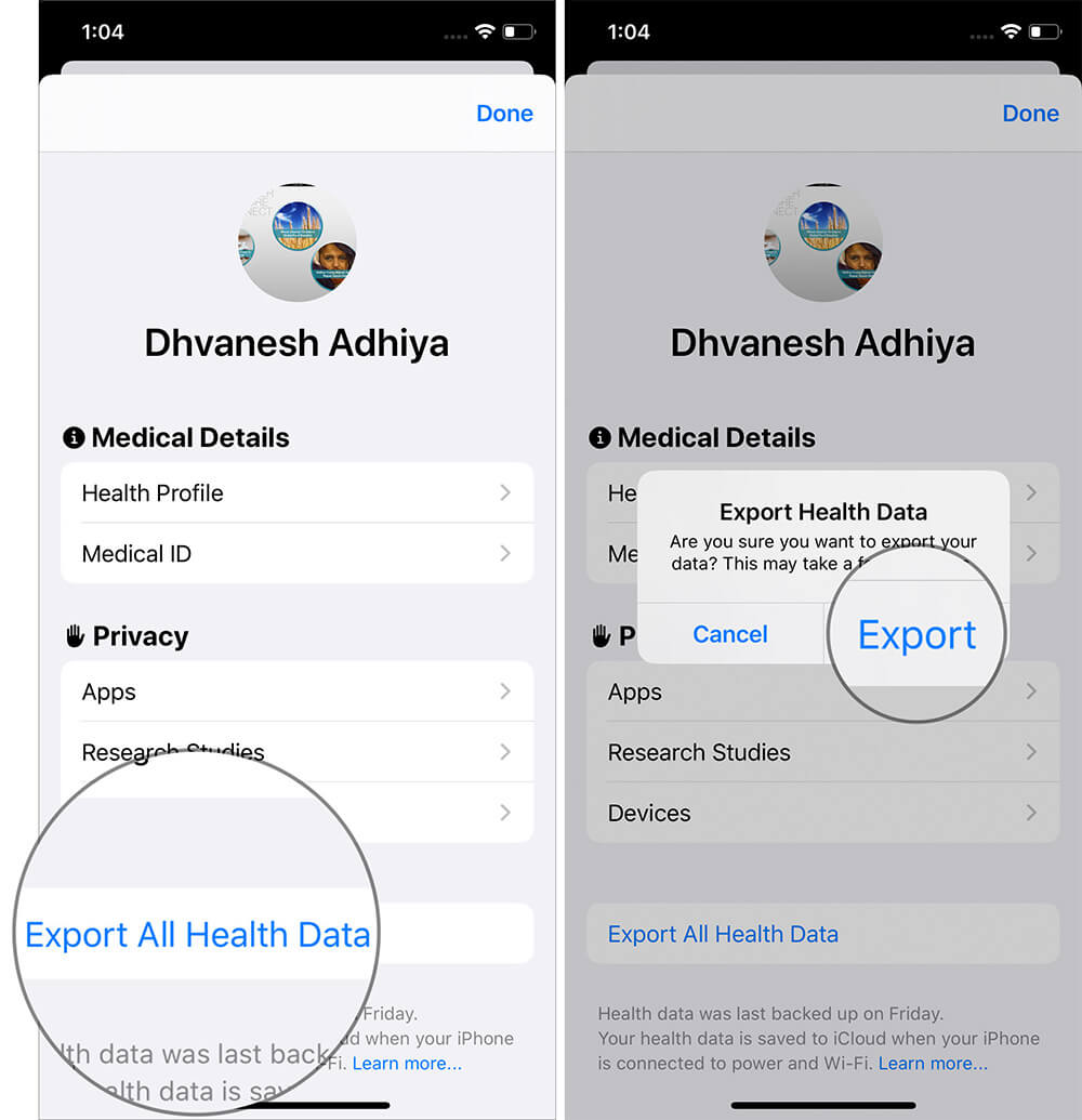 Export Health Data From iPhone