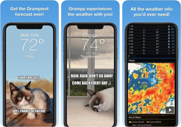 Grumpy Cat Funny Weather iPhone and iPad App Screenshot