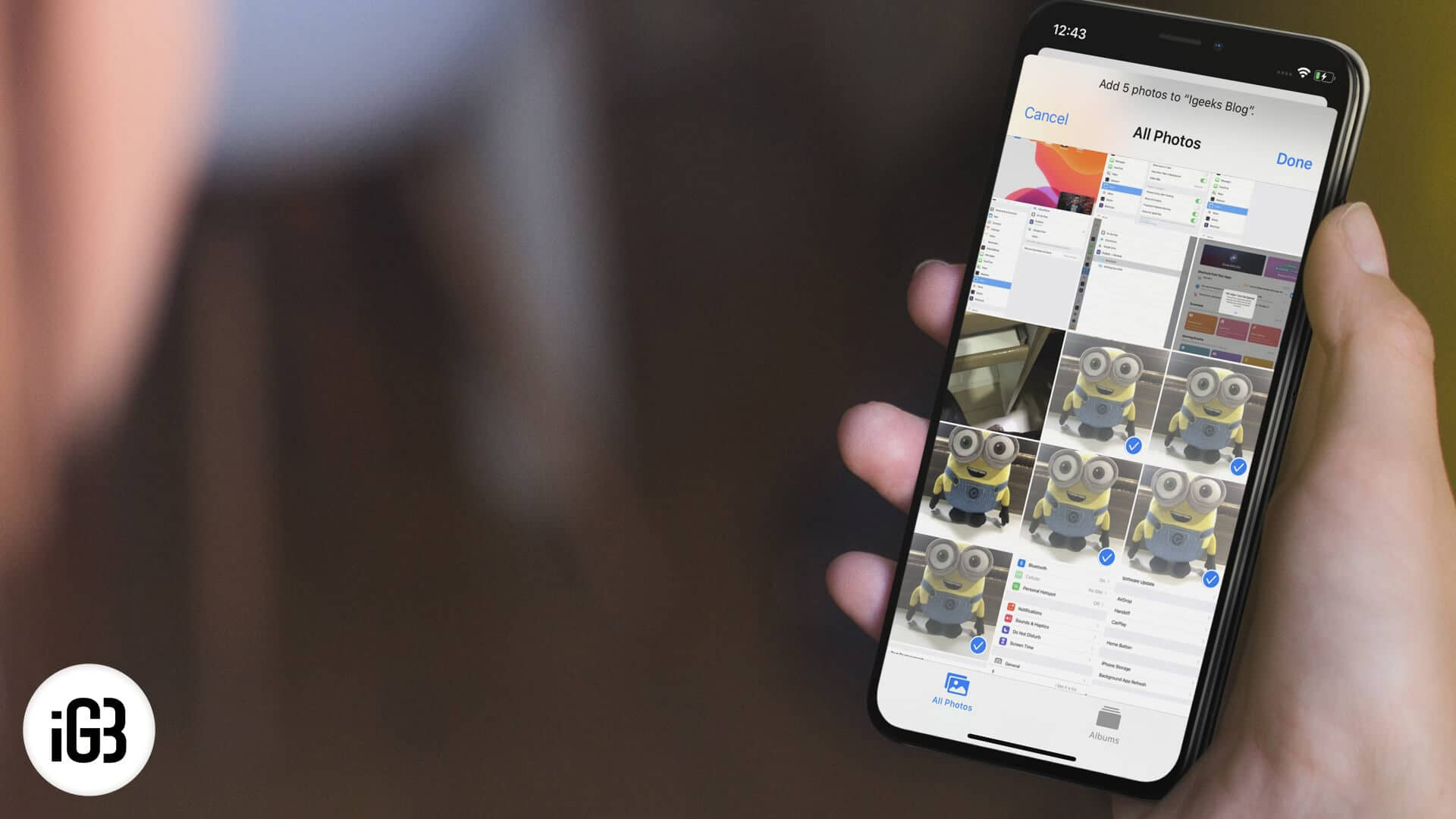 How to Add Photos to Album on iPhone