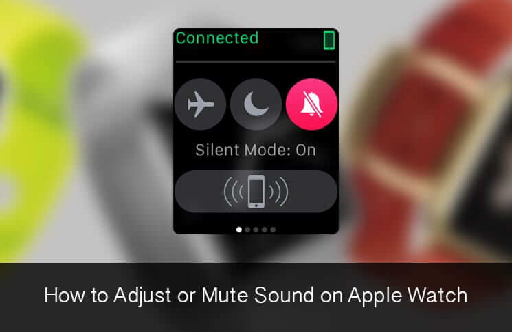 How to Adjust or Mute Sound on Apple Watch