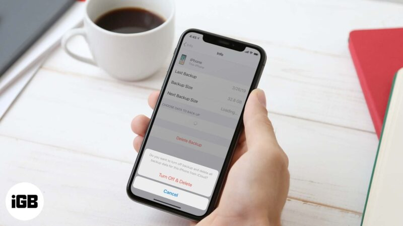 How to Delete iCloud Backup from iPhone or iPad