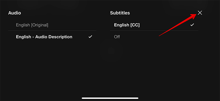 How to Enable Subtitles in Netflix on iPhone and iPad