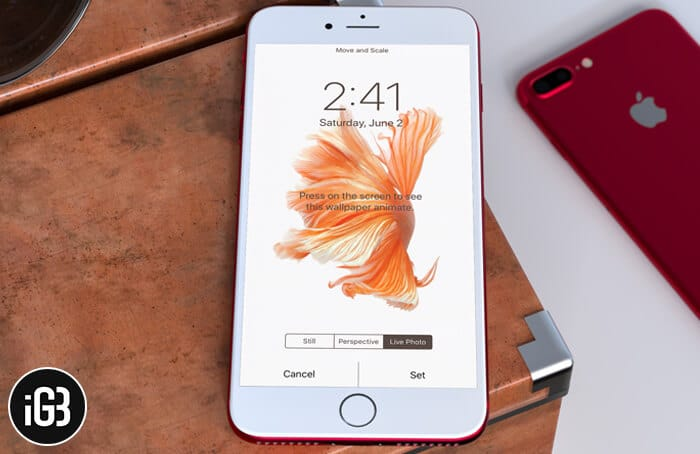 How to Get Back Live Fish Wallpapers in iOS 11