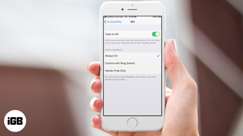 How to Turn ON Type to Siri on iPhone and iPad