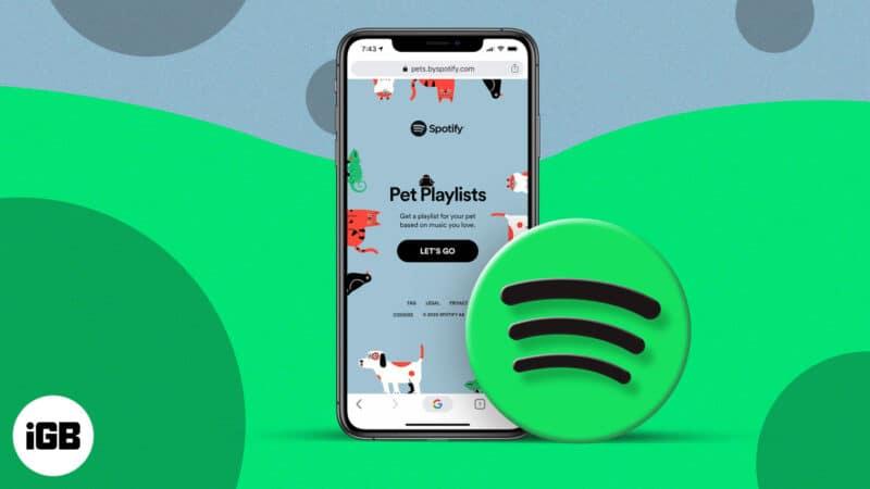 How to make custom pet playlist on Spotify