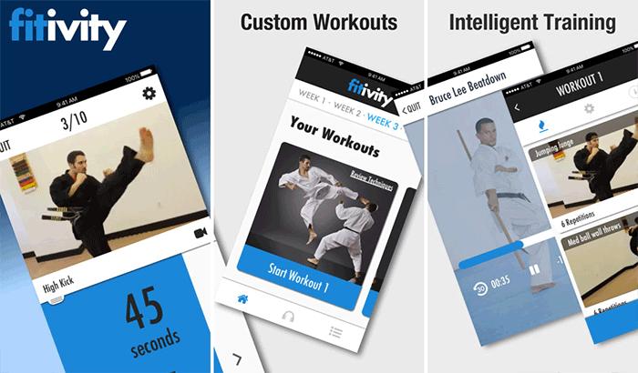 Karate Training Program Self-Defense iPhone App Screenshot
