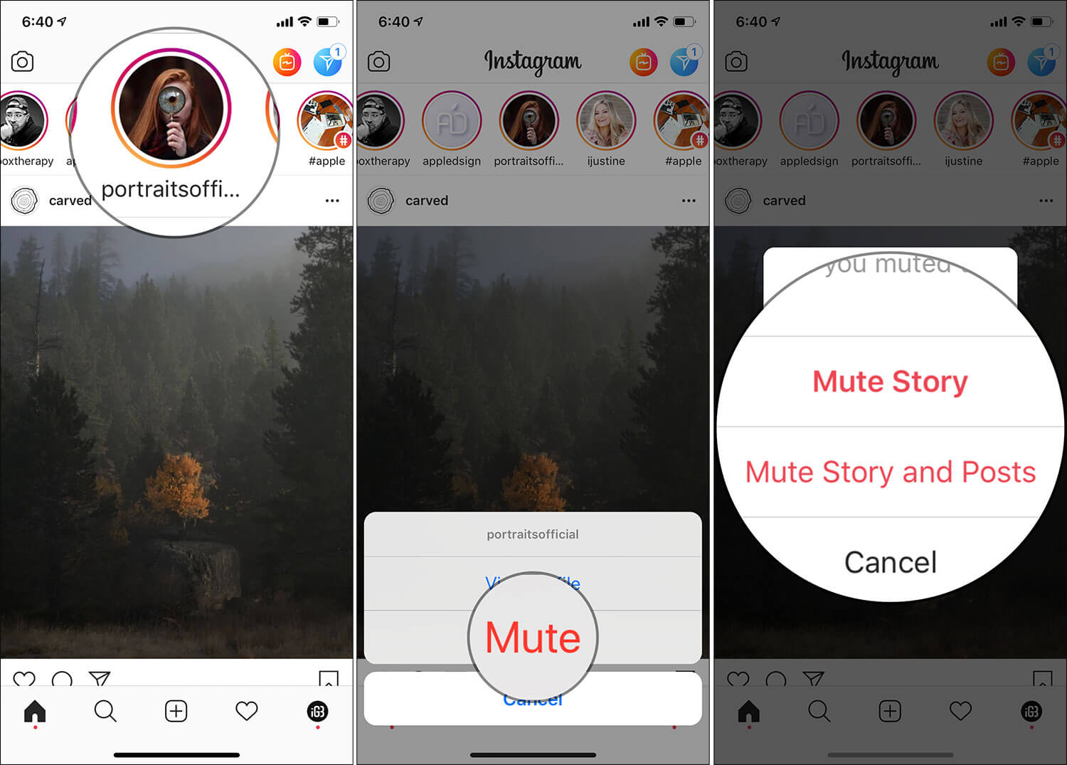 Mute Instagram Story on iPhone Without Unfollowing Account