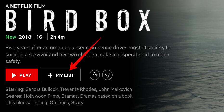 My List in Netflix