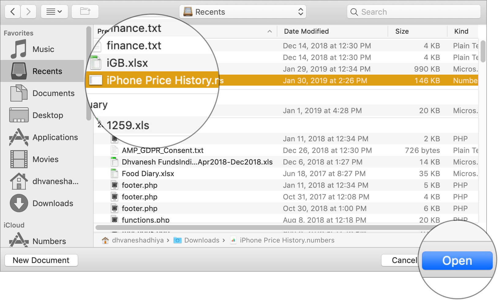 Open Document you wish to have the previous version in Mac Numbers App