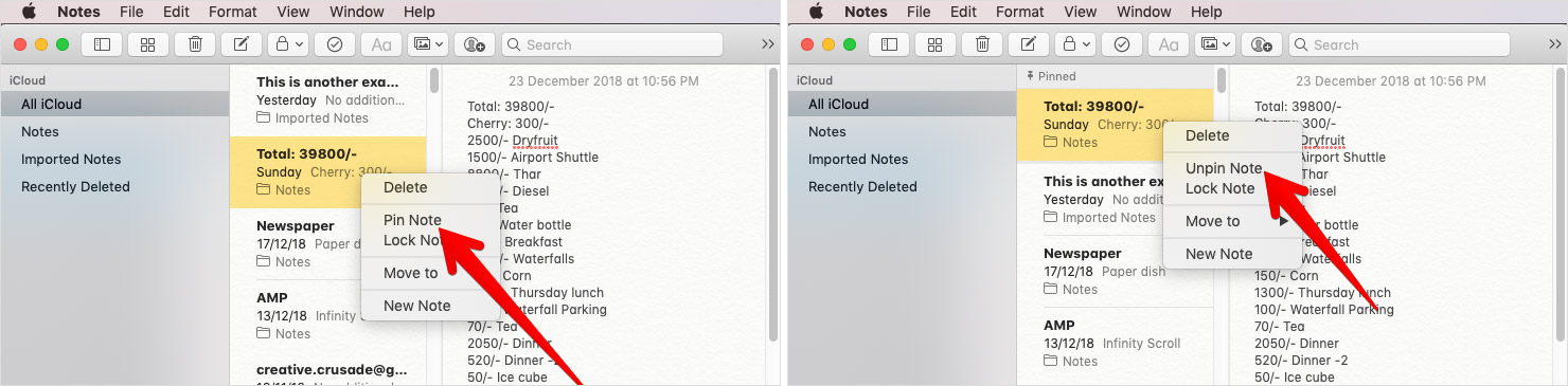 Pin-Unpin Notes on Mac