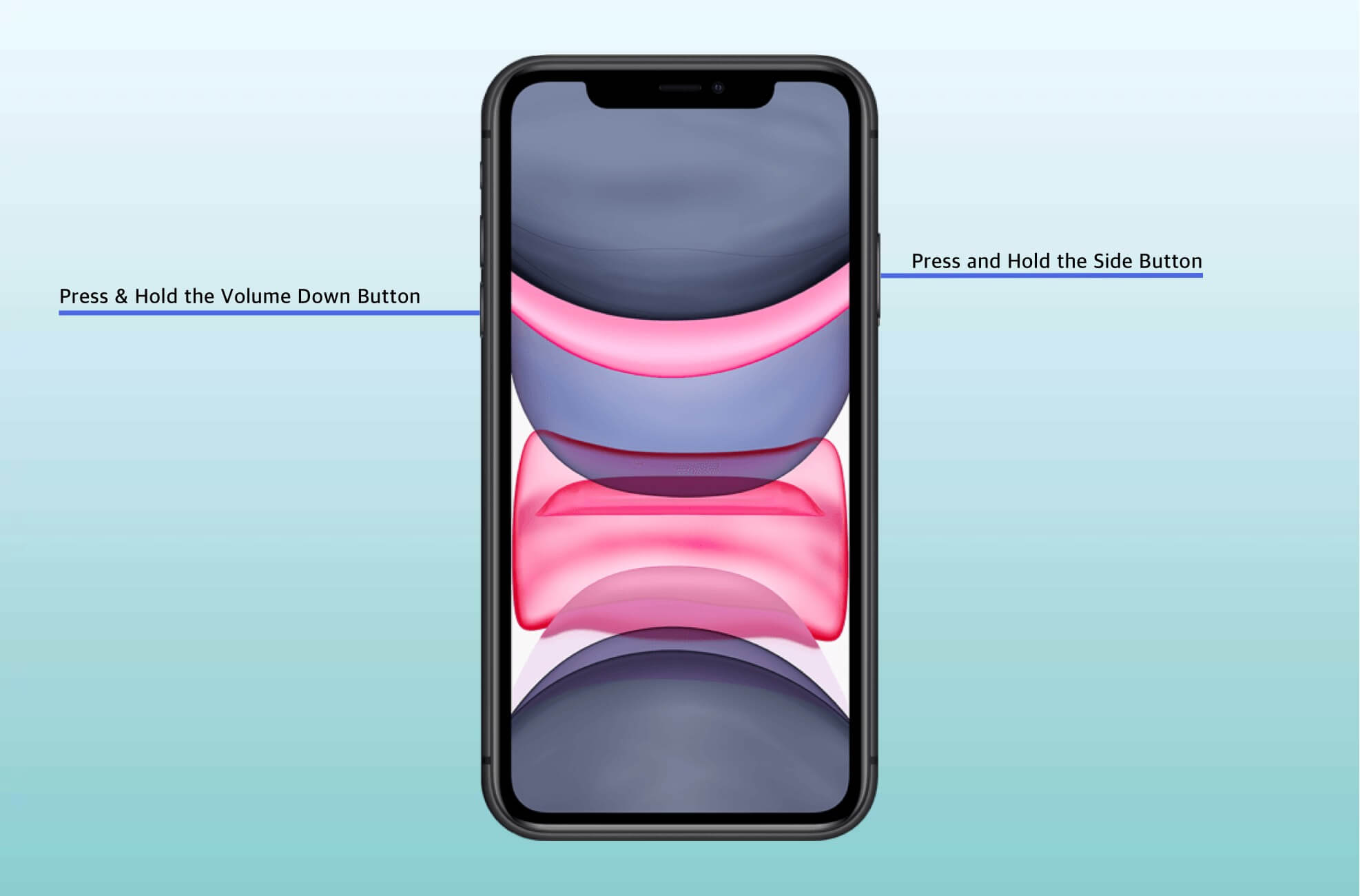 Press & Hold the Side Button Volume Down Button on iPhone 11