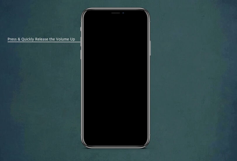 Press and Quickly Release the Volume Up button on iPhone 11