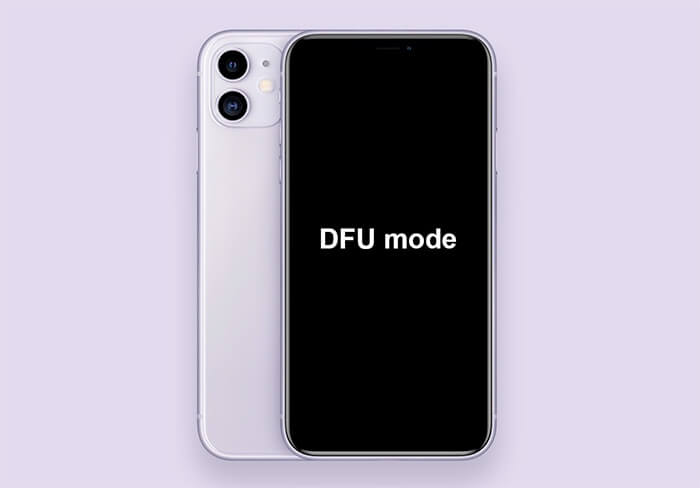 Put the iPhone into DFU