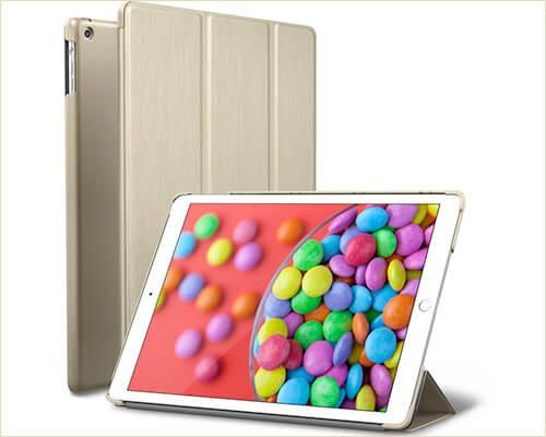 ROARTZ iPad Air Slim Case