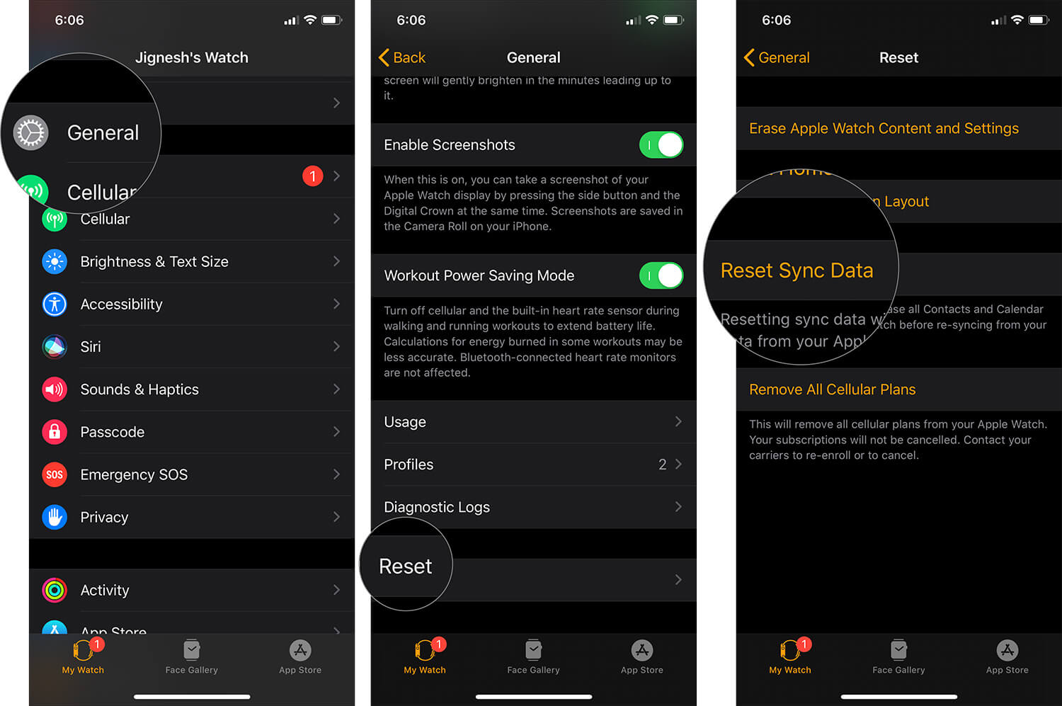 Reset Sync Data in Watch App on iPhone