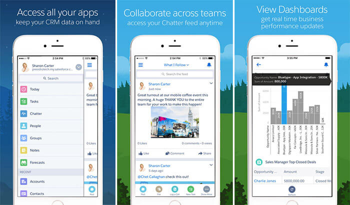 Salesforce iPad App Screenshot