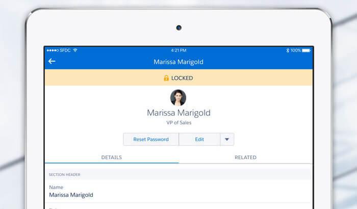 SalesforceA iPad App Screenshot