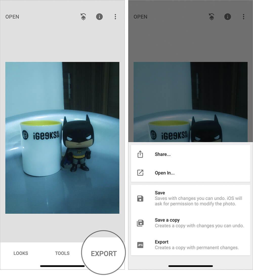 Save Edited Raw Photo on iPhone using iOS Snapseed app