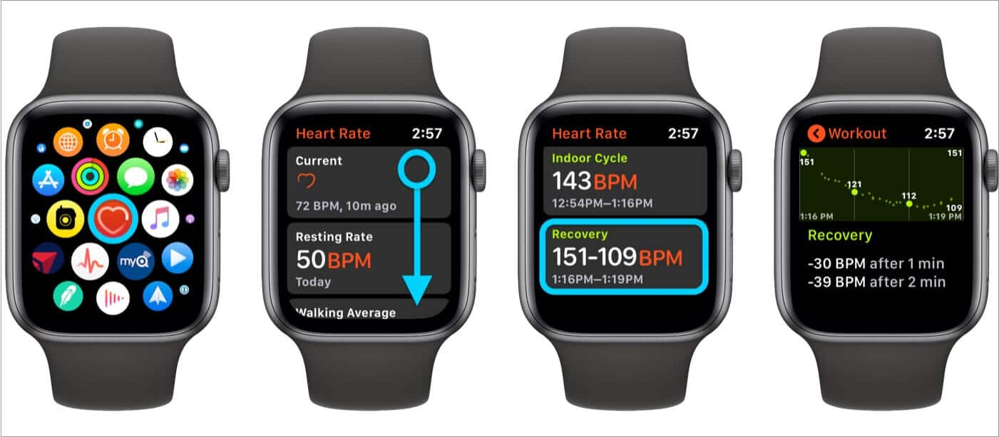 See Heart Rate Recovery on Apple Watch