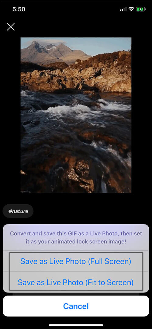 Select Preferred Option to Save Live Photo on iPhone
