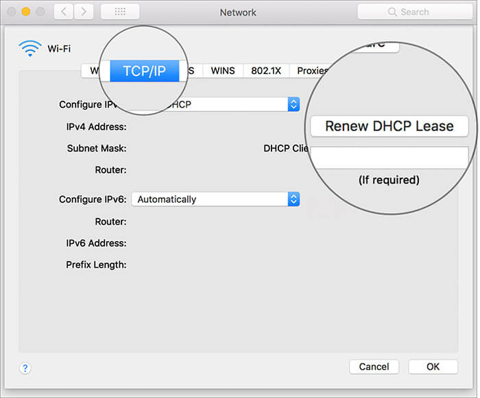 Select Renew DHCP Lease Under TCP:IP Section in Mac Network