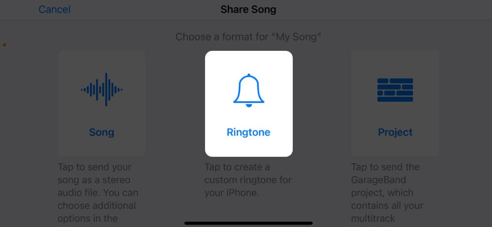 Select Ringtone and tap Export on iPhone