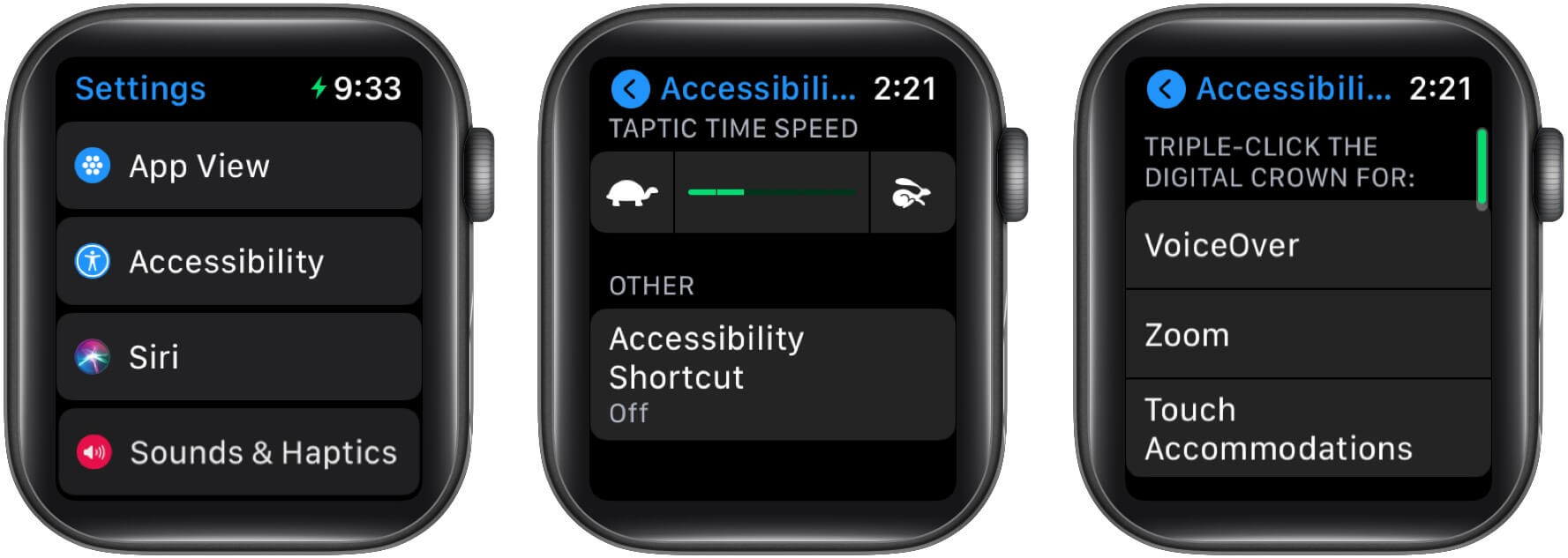 Set the Accessibility Shortcut on your Apple Watch