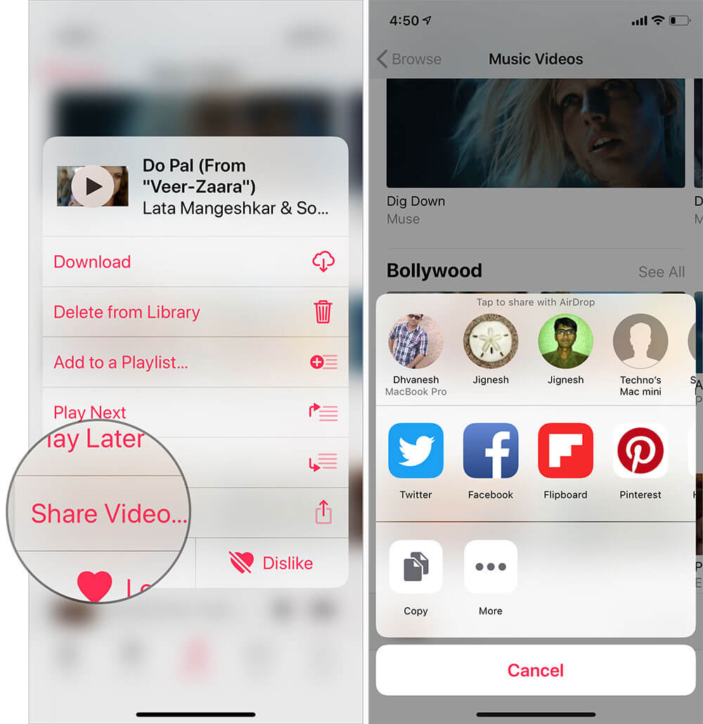 Share Music Videos in Apple Music