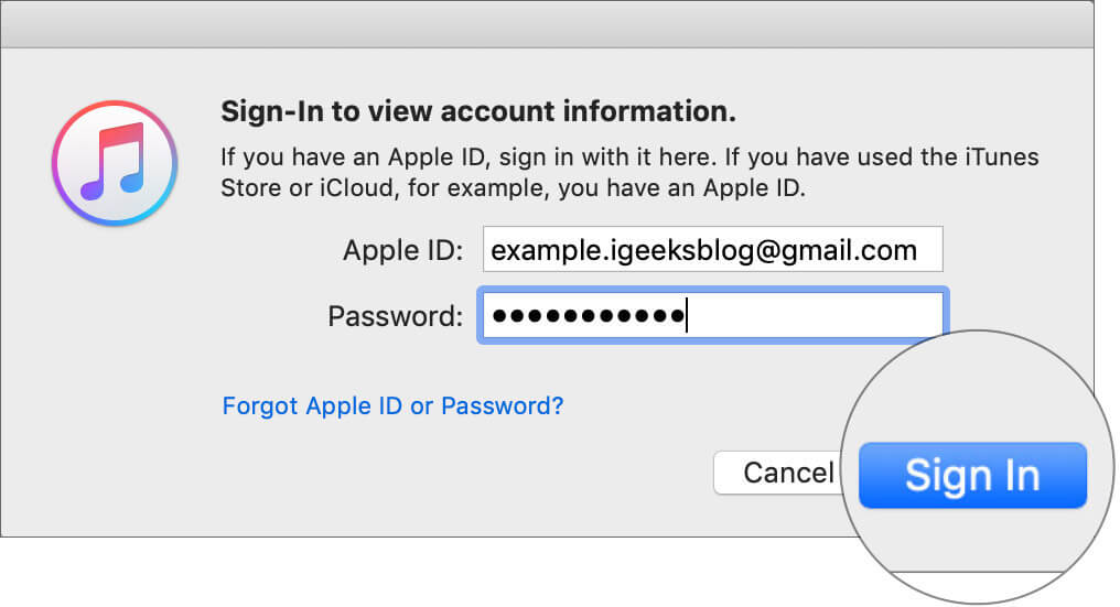 Sign in to iTunes with Apple ID and Password