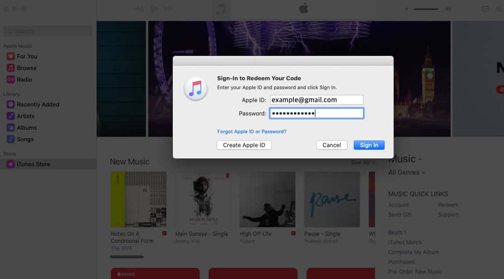 Sign in with Apple ID Password in Music App on Mac