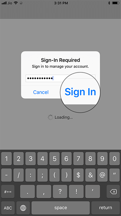 Sign in with your Apple ID Password on iPhone or iPad