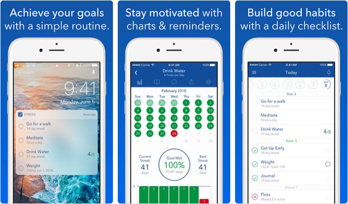 Strides Habit Tracker iPhone and iPad App Screenshot