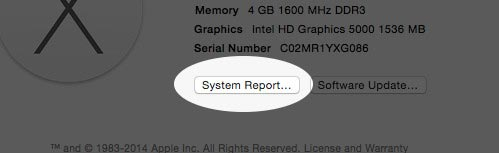 System Report of iMac and MacBook