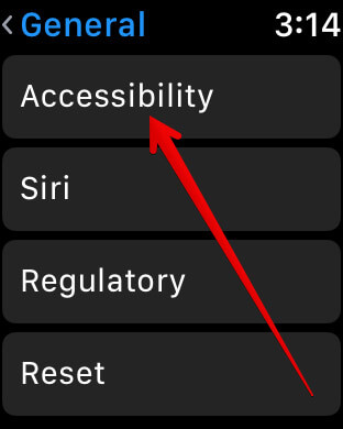 Tap on Accessibility in Apple Watch Settings