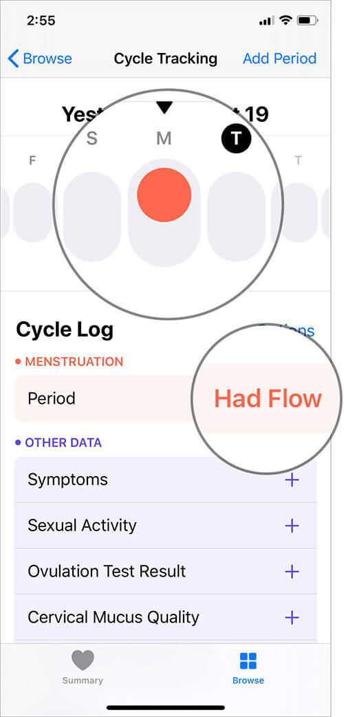 Tap on Day and then Menstruation Flow in iOS Health App