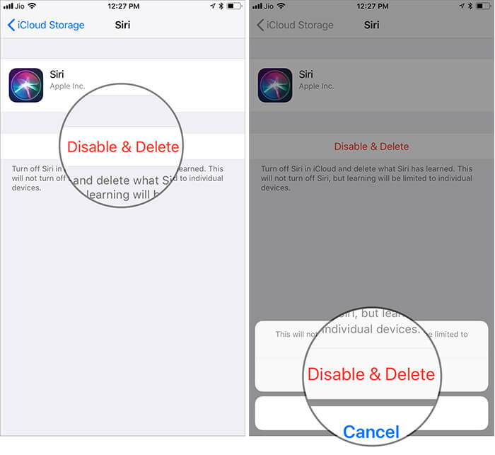 Tap on Disable & Delete to Remove Siri Data from iCloud on iPhone