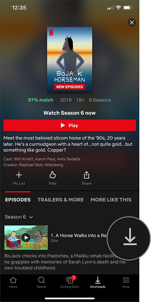 Tap on Download Button Next to Movie or TV episode in Netflix on iPhone