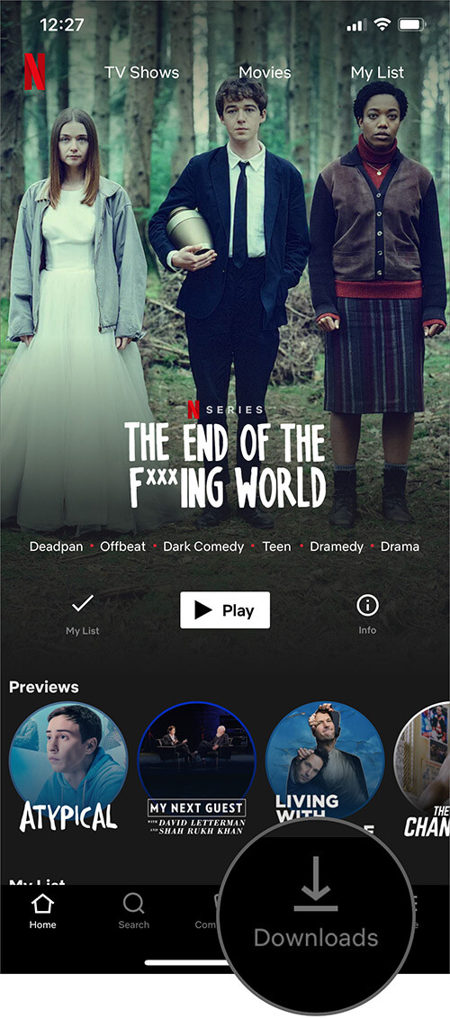 Tap on Download Button in Netflix App on iPhone