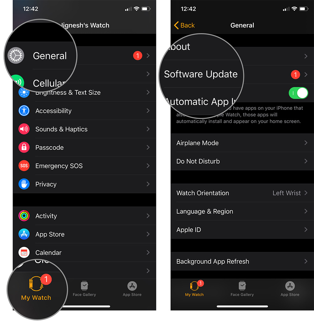 Tap on General and Software Update in Watch App on iPhone