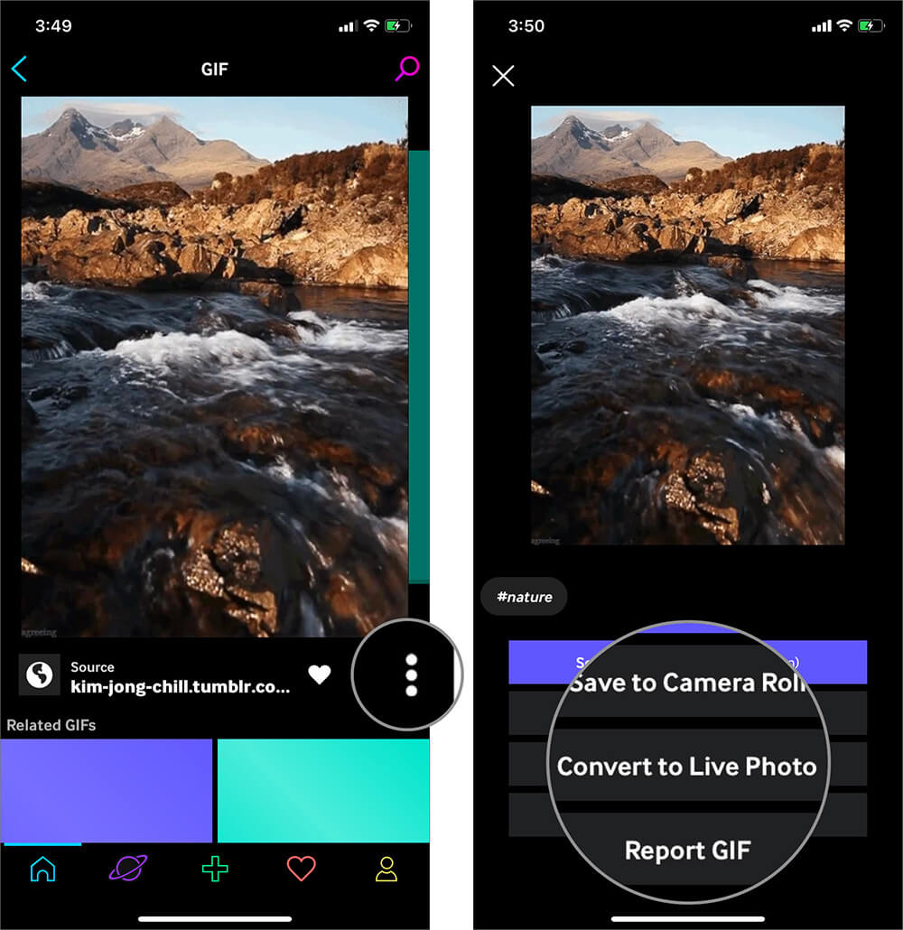 Tap on Hamburger icon and Select Convert to Live Photo in GIPHY App on iPhone