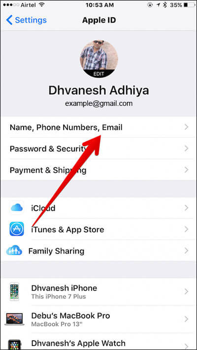 Tap on Name, Phone Numbers, Email in iPhone Settings