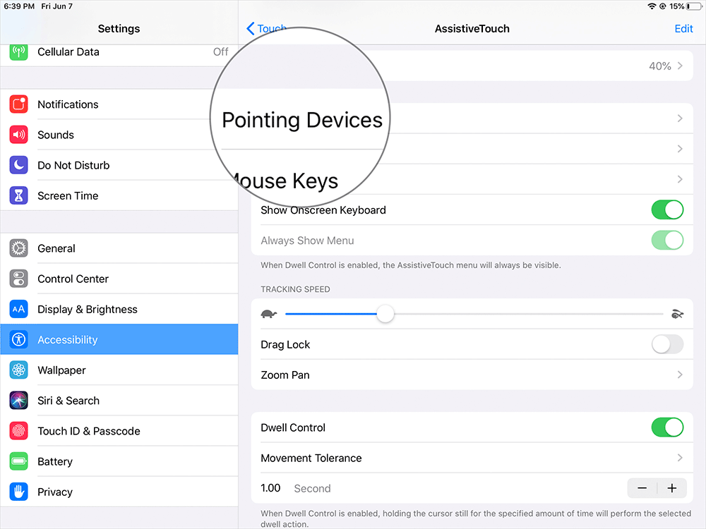 Tap on Pointing Devices on iPad