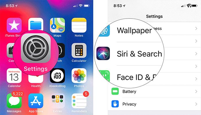 Tap on Settings then Siri & Search on iPhone or iPad