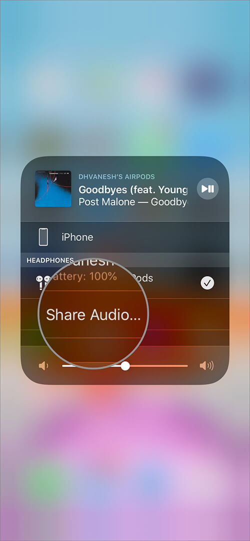 Tap on Share Audio in iOS 13 AirPlay App on iPhone