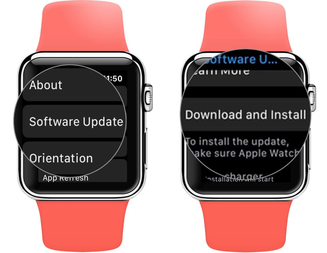 Tap on Software Update and then Download and Install on Apple Watch